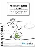 Finanzkrisen damals und heute (eBook, ePUB)