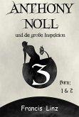 Anthony Noll und die große Inspektion (eBook, ePUB)