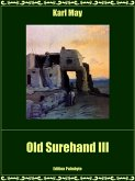 Old Surehand III (eBook, ePUB)