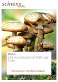 Die wundersame Welt der Pilze (eBook, ePUB)