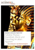 Fallakte Pharao (eBook, ePUB)