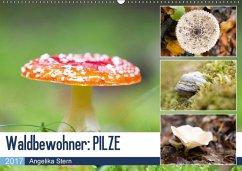 9783665560928 - Stern, Angelika: Waldbewohner: PILZE (Wandkalender 2017 DIN A2 quer) - Buch