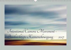9783665560324 - Karius, Kirsten: Intentional Camera Movement - Beabsichtigte Kamerabewegung (Wandkalender 2017 DIN A3 quer) - کتاب
