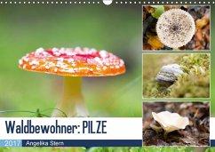 9783665560911 - Stern, Angelika: Waldbewohner: PILZE (Wandkalender 2017 DIN A3 quer) - Buch
