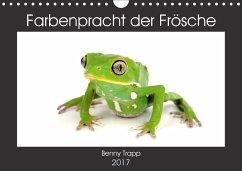 9783665560980 - Trapp, Benny: Farbenpracht der Frösche (Wandkalender 2017 DIN A4 quer) - Buch