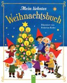 Mein liebstes Weihnachtsbuch (eBook, ePUB)