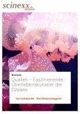 Quallen (eBook, ePUB)