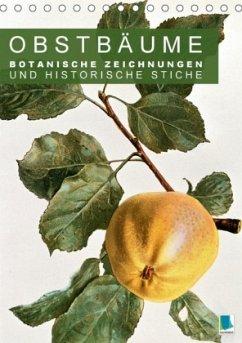 9783665561864 - CALVENDO: Obstbäume: Botanische Zeichnungen und historische Stiche (Tischkalender 2017 DIN A5 hoch) - Buch