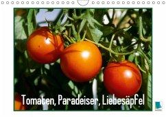 9783665561475 - CALVENDO: Tomaten, Paradeiser, Liebesäpfel (Wandkalender 2017 DIN A4 quer) - Buch