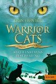 Streifensterns Bestimmung / Warrior Cats - Special Adventure Bd.4