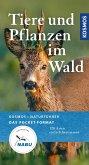 Tiere und Pflanzen unserer Wälder (eBook, ePUB)