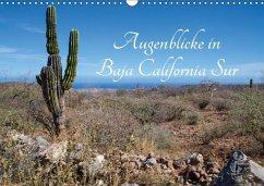 9783665564025 - Schilling, Thomas: Augenblicke in Baja California Sur (Wandkalender 2017 DIN A3 quer) - Buch