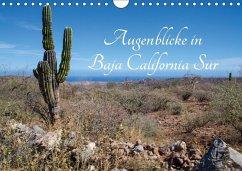 9783665564018 - Schilling, Thomas: Augenblicke in Baja California Sur (Wandkalender 2017 DIN A4 quer) - کتاب
