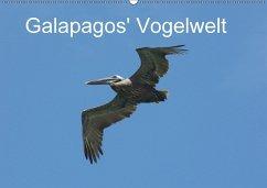 9783665563523 - Schuster, Michael; Schuster, Eva: Galapagos´ Vogelwelt (Wandkalender 2017 DIN A2 quer) - کتاب