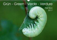 9783665563592 - Won, Pörli: Grün - Green - Verde - Verdure (Wandkalender 2017 DIN A3 quer) - Bok