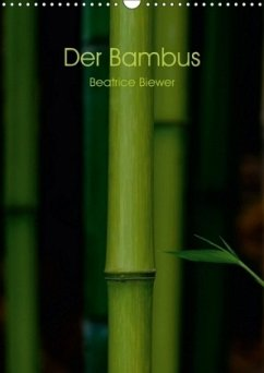 9783665563424 - Biewer, Beatrice: Der Bambus (Wandkalender 2017 DIN A3 hoch) - كتاب