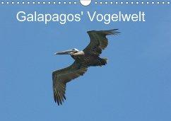 9783665563509 - Schuster, Michael; Schuster, Eva: Galapagos´ Vogelwelt (Wandkalender 2017 DIN A4 quer) - کتاب