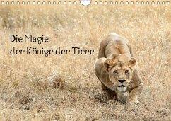 9783665563264 - Skrypzak, Rolf: Die Magie der Könige der Tiere (Wandkalender 2017 DIN A4 quer) - كتاب