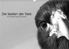 9783665563295 - Skrypzak, Rolf: Die Seelen der wilden Tiere (Wandkalender 2017 DIN A3 quer) - كتاب
