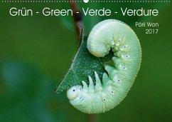 9783665563608 - Won, Pörli: Grün - Green - Verde - Verdure (Wandkalender 2017 DIN A2 quer) - Livre