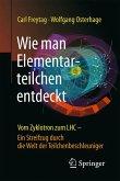 Wie man Elementarteilchen entdeckt (eBook, PDF)