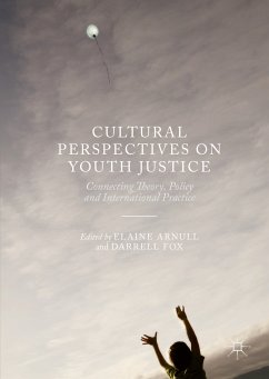 Cultural Perspectives on Youth Justice (eBook, PDF)