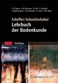 Scheffer/Schachtschabel: Lehrbuch der Bodenkunde (eBook, PDF)