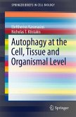 Autophagy at the Cell, Tissue and Organismal Level (eBook, PDF)
