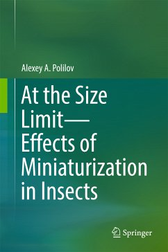 At the Size Limit - Effects of Miniaturization in Insects (eBook, PDF) - Polilov, Alexey A.