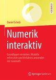 Numerik interaktiv (eBook, PDF)