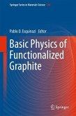 Basic Physics of Functionalized Graphite (eBook, PDF)