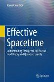 Effective Spacetime (eBook, PDF)