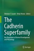 The Cadherin Superfamily (eBook, PDF)