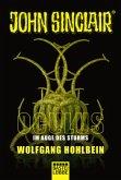 Oculus - Im Auge des Sturms / John Sinclair Oculus Bd.1