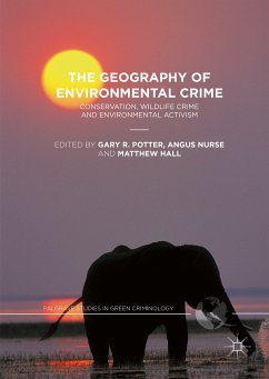 The Geography of Environmental Crime (eBook, PDF)