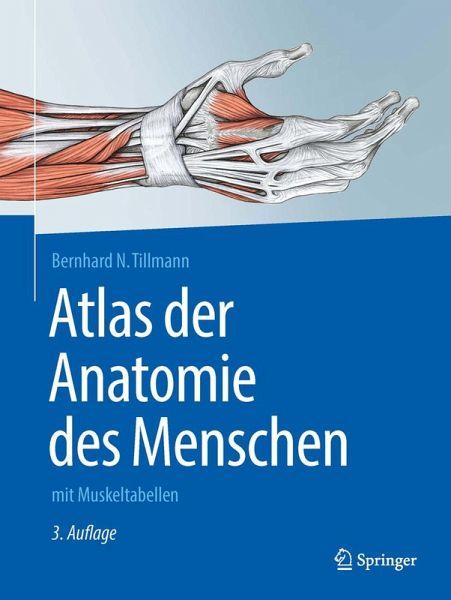 Atlas der Anatomie des Menschen (eBook, PDF) von Bernhard N ...