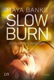 Entfesseltes Verlangen / Slow Burn Bd.4
