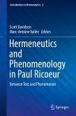 Hermeneutics and Phenomenology in Paul Ricoeur (eBook, PDF)