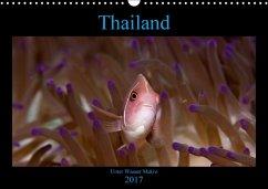 9783665565954 - schmidt xway-image.de, ralf: Thailand - Unter Wasser Makro (Wandkalender 2017 DIN A3 quer) - Buch
