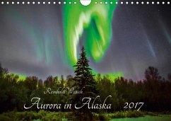 9783665565572 - Wittich, Reinhold: Aurora in Alaska (Wandkalender 2017 DIN A4 quer) - کتاب