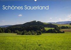 9783665566838 - Rein, Simone: Schönes Sauerland (Wandkalender 2017 DIN A2 quer) - کتاب