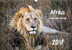 9783665565466 - Bentlage, Horst: Afrika - Faszination Tierwelt (Wandkalender 2017 DIN A3 quer) - Buch