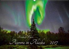 9783665565596 - Wittich, Reinhold: Aurora in Alaska (Wandkalender 2017 DIN A2 quer) - Buch