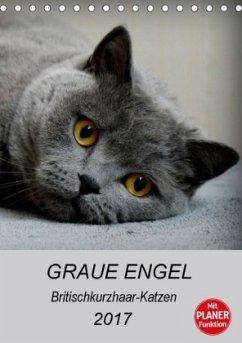9783665565312 - Brumma, Jacqueline: Graue Engel - Britischkurzhaar-Katzen (Tischkalender 2017 DIN A5 hoch) - کتاب