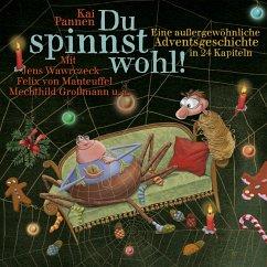 Du spinnst wohl! Bd.1 (MP3-Download) - Pannen, Kai