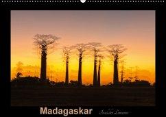 9783665567064 - Kribus, Uwe: Madagaskar - Insel der Lemuren (Wandkalender 2017 DIN A2 quer) - کتاب