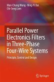 Parallel Power Electronics Filters in Three-Phase Four-Wire Systems (eBook, PDF)