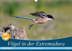 9783665567743 - Schmid, Samuel: Vögel in der Extremadura (Wandkalender 2017 DIN A3 quer) - Buch