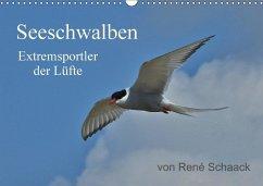 9783665567361 - Schaack, René: Seeschwalben - Extremsportler der Lüfte (Wandkalender 2017 DIN A3 quer) - کتاب
