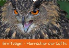 9783665568078 - Wejat-Zaretzke, Gabriela: Greifvögel - Herrscher der Lüfte (Wandkalender 2017 DIN A3 quer) - کتاب